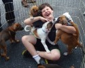 kid with puppies!!